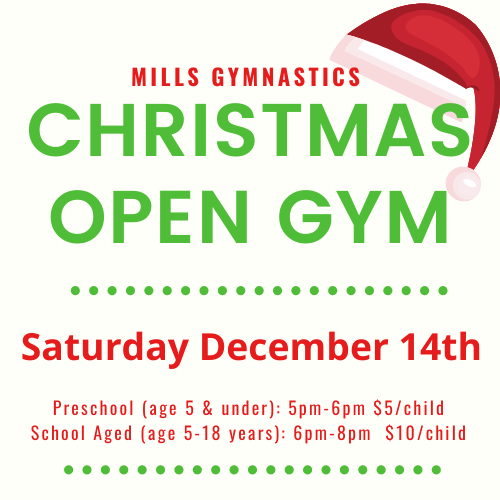 Christmas Open Gym